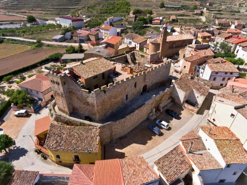 Kasteel-overnachting met je hond in Castillo de Grisel - Grisel