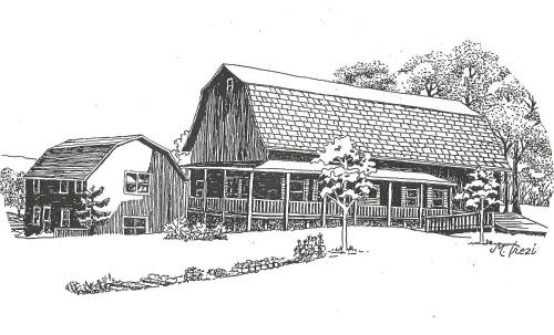 The South Glenora Tree Farm - Accommodation - Dundee