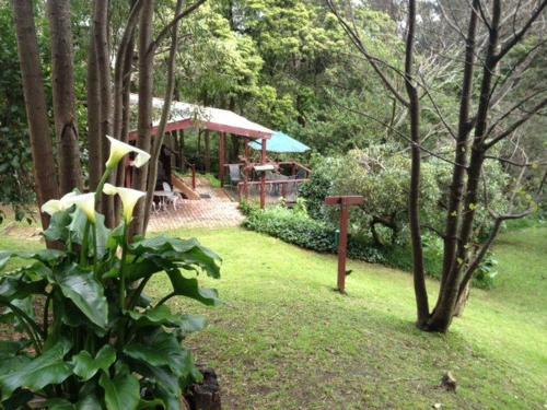 Stone's Throw Cottage Bed and Breakfast - Accommodation - Belgrave