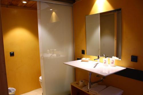 Double Room with Terrace Mas Ravetllat 6