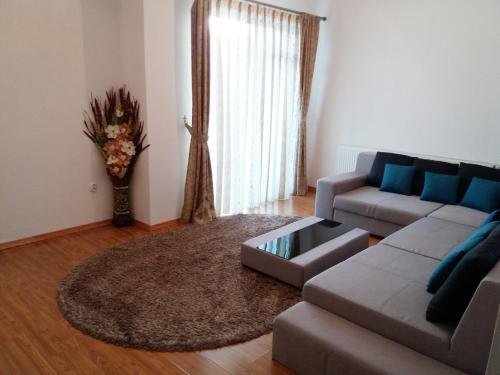 . Apartament Selimbar