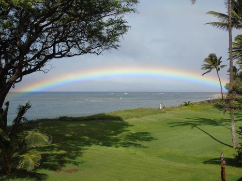 Aloha AKU - Hula 1 - Kihei, HI 96753