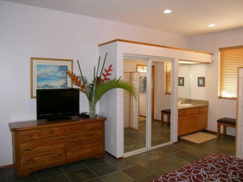 Aloha AKU - Honu 1