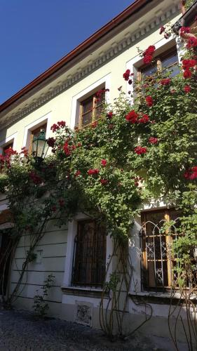 House of Roses