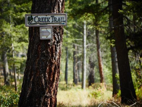 Bear Creek Lodge - Montana - Victor, MT 59875
