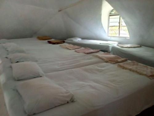 Seng i sovesal for 10 personer (begge kjønn) (Bed in 10-Bed Mixed Dormitory Room)