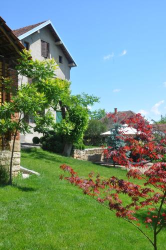 . Guesthouse Djurić