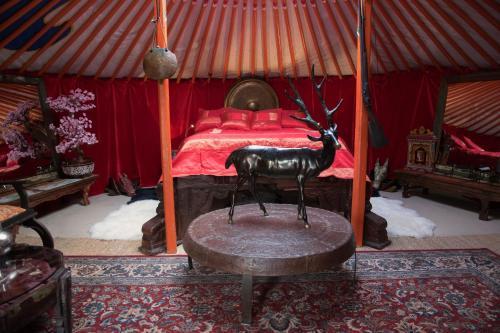 Crazy Lounge BnB - Accommodation - Aigle