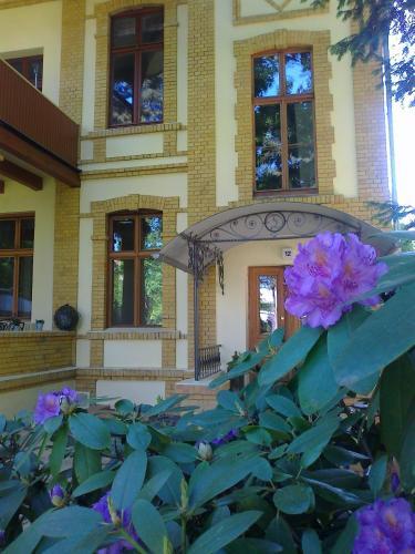 Residenz Villa Kult photo 39