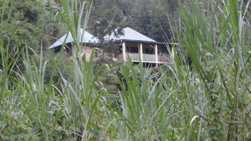 . Ruboni Community Camp