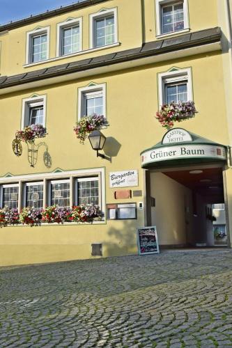 Hotel Grüner Baum - Naila