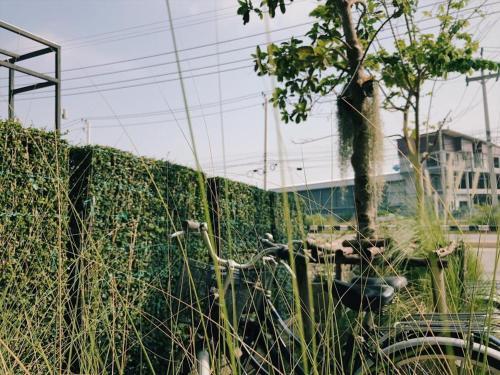 Yimwhan Hostel &Cafe photo 17