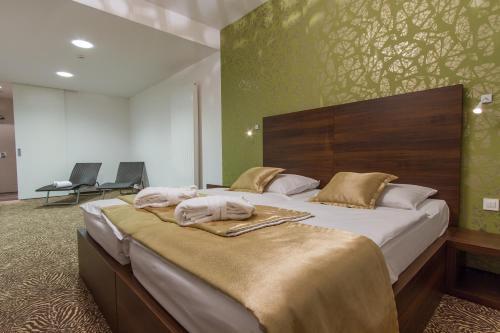 Rimske Terme - Hotel Rimski Dvor phòng hình ảnh