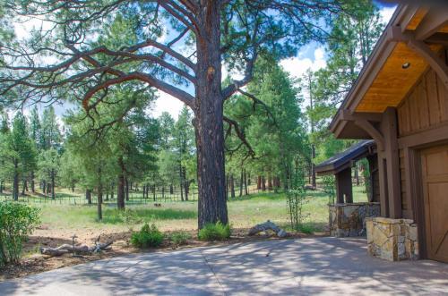 Pine Canyon Retreat - Flagstaff, AZ 86005