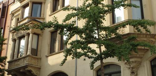 Stadt-Apartment anno 1903