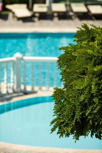 Фото отеля Ata Lagoon Beach Hotel