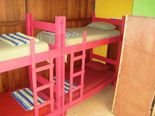 4-Bed Mixed Dormitory Room