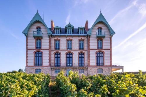 Kasteel-overnachting met je hond in Chateau de Sacy - Sacy