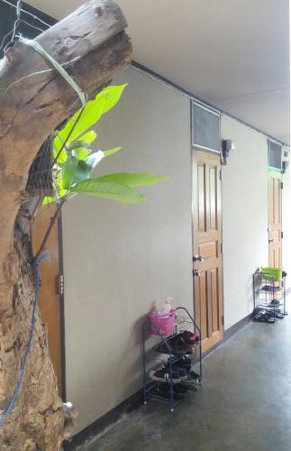 Anurak Guesthouse photo 2