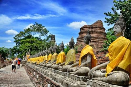 Slow Tree Ayutthaya photo 11