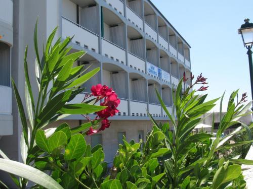 __{offers.Best_flights}__ Hotel Stella Maris