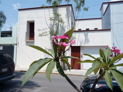 Casa Vacacional Jalatlaco