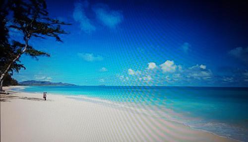 Oceanview Waimanalo Beach Bungalow