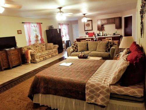 . Charming Downstairs Unit