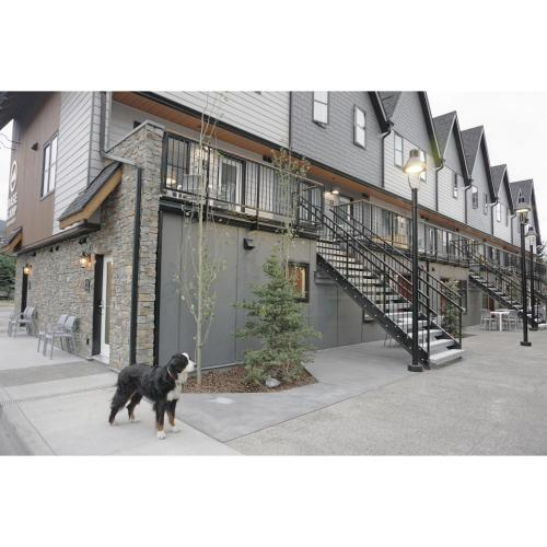 Basecamp Resorts Canmore - Canmore, AB T1W 1N6