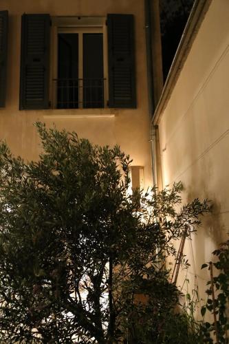 Le clos de l'olivier photo 12