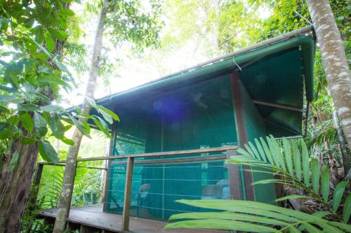 Rainforest Hut Double Room with Shared Bathroom