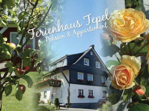 Ferienhaus Tepel Winterberg