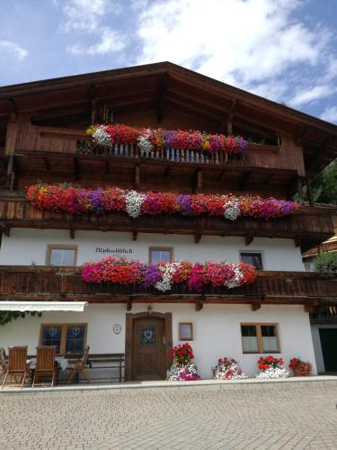 Alpbachblick Alpbach
