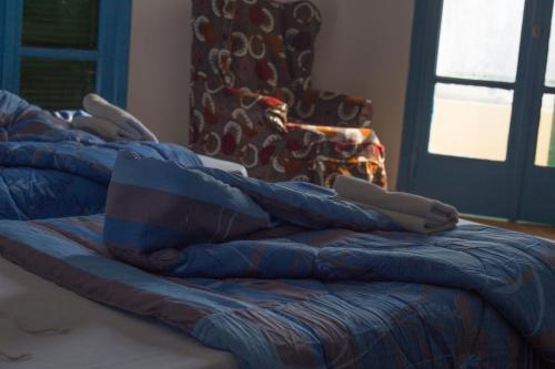 Museum House Hostel 部屋の写真