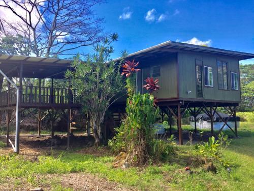 House Of Honu (turtles) Hawai'i - Keaau, HI 96749