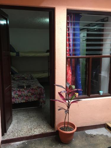 Fotos de quarto de Jonathan's Place