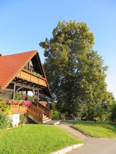 Accommodation in Šoštanj