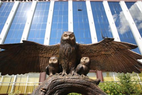 Snowy Owl Hotel