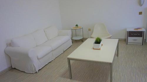 Studios Corniche photo 96