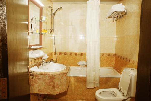 Al Jazeera Royal Hotel photo 20