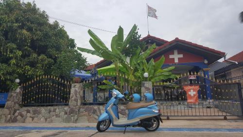 Blue House Blue House