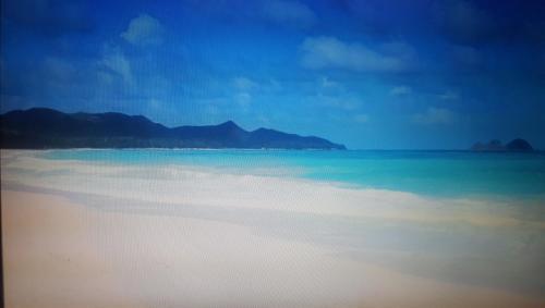 1 Bedroom Waimanalo Beach Cabana Sleeps 4 - Waimanalo, HI 96795