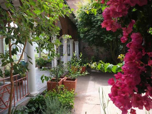 San Francisco Zen Center - San Francisco, CA 94102