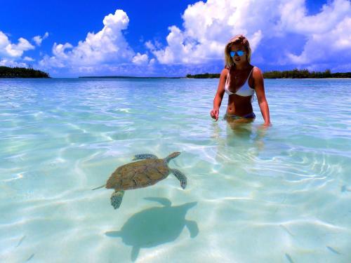 Green Turtle Cay, Abaco, Bahamas.