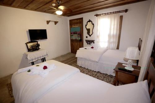Birgi Kadılar Paşazade Konağı Butik Otel