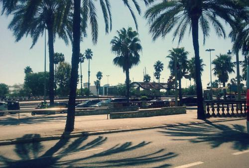 Citytrip Barceloneta Beach photo 36
