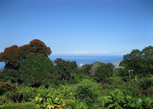 Orchid Inn - Holualoa, HI 96725