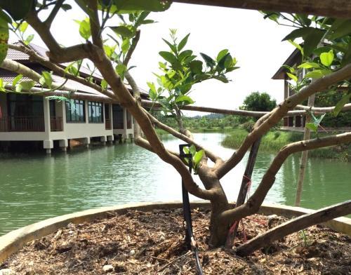 Lantala Residence Phuket