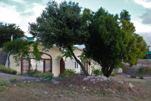 Cave Hotel Rural & Spa Las Nubes 34