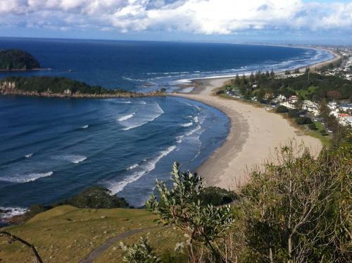Seagulls Guesthouse - Accommodation - Mount Maunganui